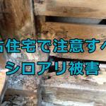 中古住宅で注意すべきシロアリ被害|内覧会での確認と予防と対策